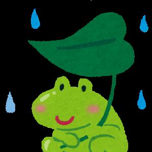 梅雨に体調不良になる原因とは?対策も♪