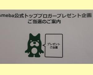 リンネルの付録、めっちゃ良い!!!