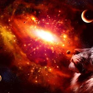 獅子座新月〜やりたいことはあるけど、それじゃあ食べていけない。まわりの目も気になる。