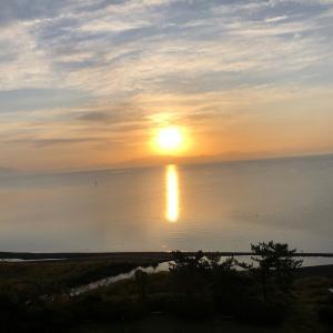※滋賀県3日目 メタセコイア~びわ湖テラス