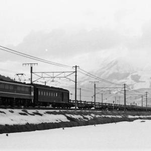 珍しいEF65Fのロンチキ列車
