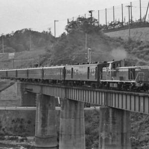 関西線河内堅上駅付近走行する50系回送列車