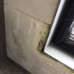 雨漏り修繕工事☆