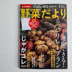 【雑誌掲載】野菜だより