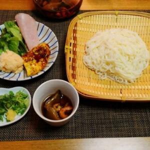 最近のお気入り☆リクエストに応えたおいしいお汁de素麺♪☆♪☆♪