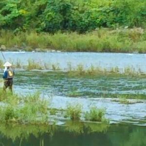 川に釣り人がいると、なんとなくほっとするね…畑えもん通信+