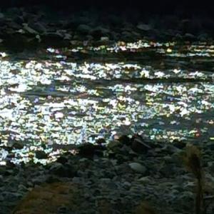 アッという間にあたりが暗くなり、川面だけが光り始めた!「そんなはずはないが、あのお方(首領)の気配がする、みんな隠れろ!」水の中の大幹部の押し殺した声だけが響いた…畑えもん通信+