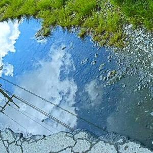 よくある質問⑰「雨の翌日、散歩をしていたらこんな水たまりがありました。もしかして「向こう側」への入り口でしょうか?」答えは「note」でネ