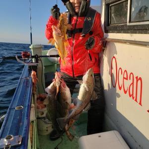 年度1月19日で釣行終了