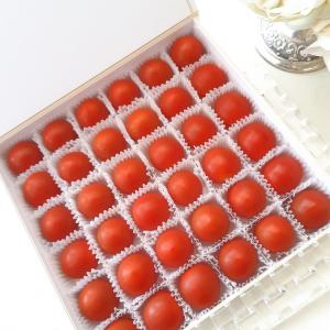 宝石みたいなミニトマト♡