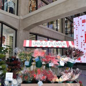 ユニクロのお花と鳩居堂♡