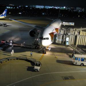 【タイムトラベル】空港物語2008年11月08日
