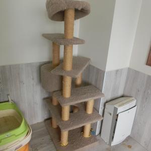 猫たちが使っていたケージが、トイレが