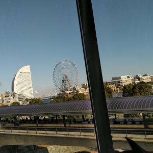 * ニューオータニ the sea *素敵なランチ*。・+(人*´∀`)+・。*