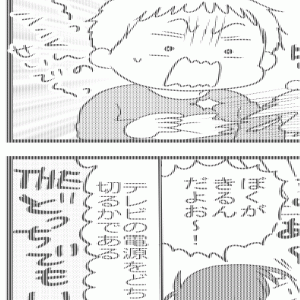 1654 変わりゆく兄弟の関係(6歳+2歳10か月)