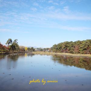 フォトフィールドの大池公園、紅葉まだみたい