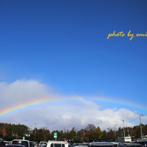 ショッピング先で見た 虹