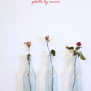 ドライな花