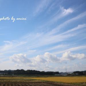久しぶりの定点写真 今日の空