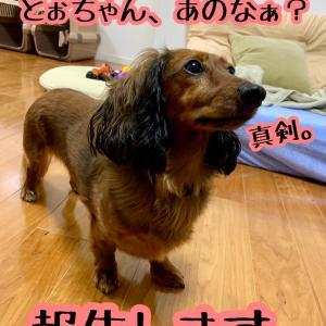 脱夏仕様〜今年は遅め〜