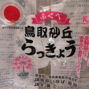 ラッキョウ漬け① 200606