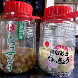 ラッキョウ漬け② 200609
