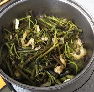春は山菜のシーズン