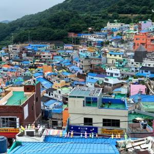 生のカニやアワビのしょうゆ漬け、食べたことありますか? 美味しい韓国釜山♪