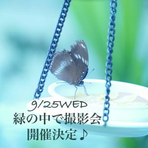 9/25(水)は緑の中で撮影会しちゃうよ♡撮りたいな♪の人、この指とまれ♡