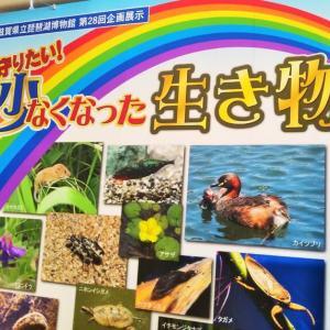 琵琶湖博物館をてくてく