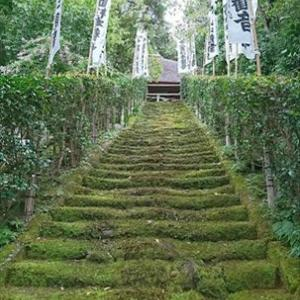 一人旅 杉本寺で毘沙門天さんにウットリ(。-_-。)ポッ