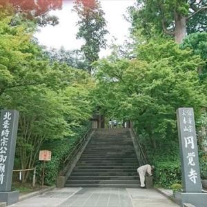 一人旅 円覚寺で出会った石・木の観音様