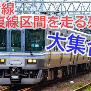 JR四国随一の高密度区間を走る列車たち