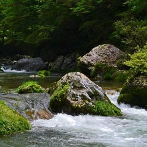 新緑の美しい四国カルスト小田深山渓谷