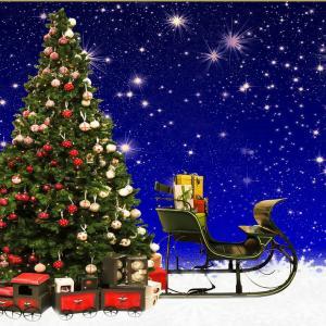 クリスマスパーティーのご案内