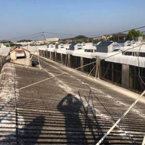 コロナ対策アップデートできてない残念な病院の話と工場スレート屋根塗装工事日報