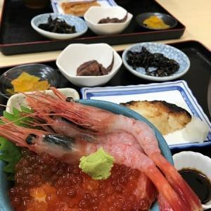 2019秋 北海道の旅 その2 函館