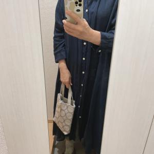 作家さんのミニバッグと今日の服
