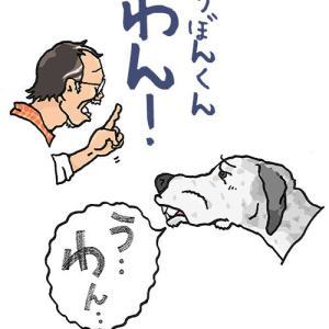 「さくら」とりぼん(演歌デュオみてぇだな…)