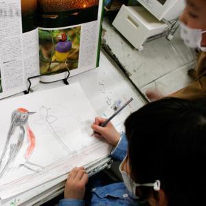 三次市/美術造形教室ー新学期【木曜・金曜・土曜・日曜】子どもクラス募集、無料体験授業実施中