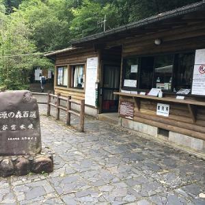 屋久島くるま旅 Vol.9 白谷雲水峡トレッキング