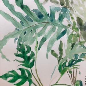 観葉植物を描きました!