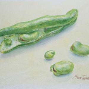 そら豆って、なんて可愛いのだろう❣️と思って描いてみました。