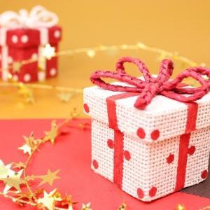 クリスマスプレゼントは、「私のアイシング技術提供」にしようと思っています^^