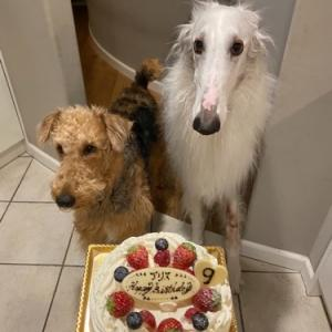 9歳のお誕生日!