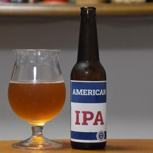 2nd Story Ale Works American IPA