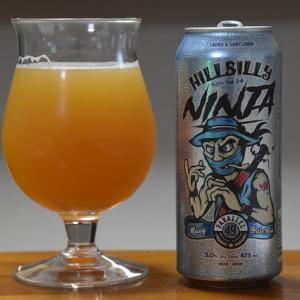 Parallel 49 Hillbilly Ninja