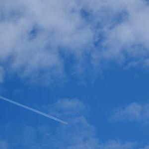 撮れました、飛行機の写真