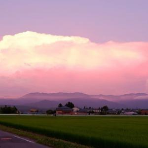 懐かしい雰囲気の、農村風景 162