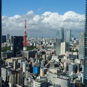 東京コンサルテーションを無事に終え、帰国しました!